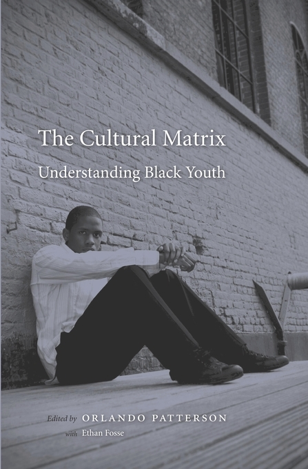The Cultural Matrix
