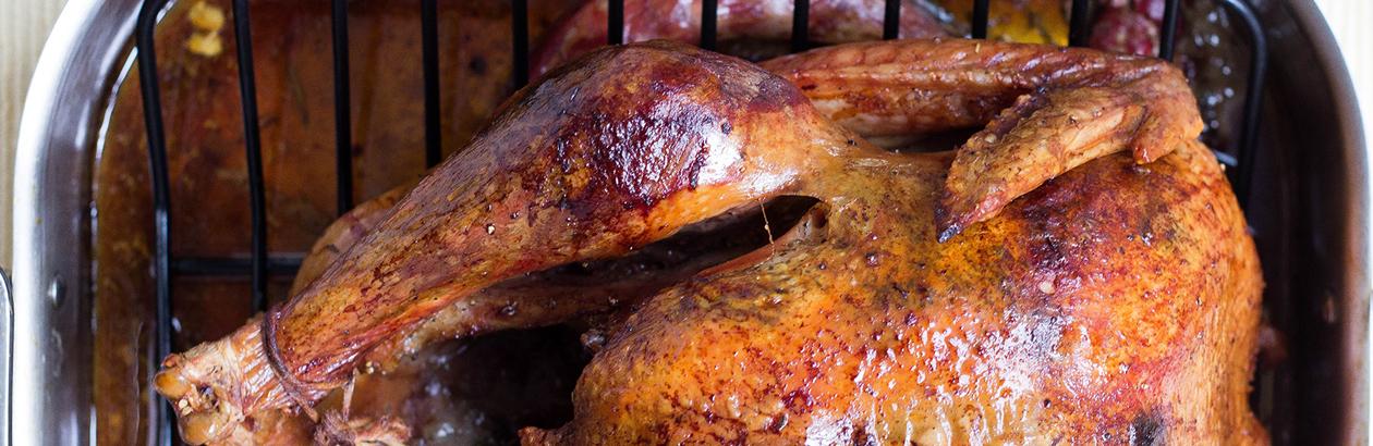 Talking Insufferable Turkey