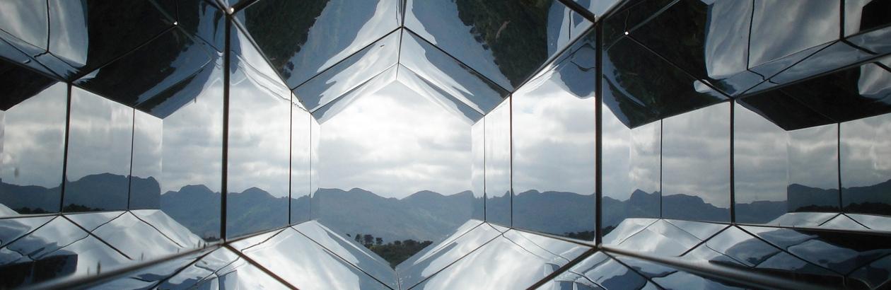 Pluralism In The Mirror