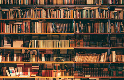 A Novel View of the Gospel
