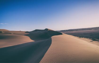 Murmur in the Desert