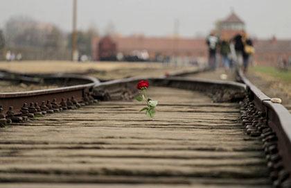 Love Lives Through Sacrifice