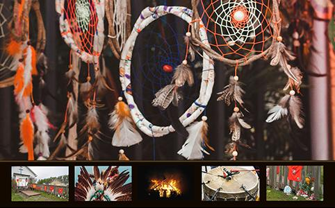 The Complex Web of Indigenous Diversity